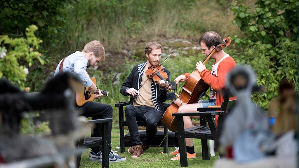 P2 Live - Folk Korröfestivalen med Erlend Viken Trio Foto: Lennart Nilsson/Sveriges Radio