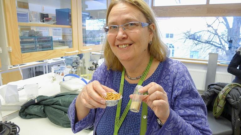 Vetenskapsradion Klotet - Malda maskr till lunch? Mjölmaskar är lättare att äta i pulverform, tror Maud Langton, professor vid Institutionen för livsmedelsvetenskap, Sveriges Lantbruksuniversitet i Uppsala.