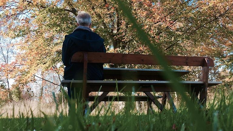 Ettt fotografi taget lite anonymt, bakifrån på mamman Camilla. Hon vill inte figurera med sitt hela namn. Man ser bara en bänk på fotot, mamman som sitter bakifrån och hösten som lever sitt eget liv framför henne.
