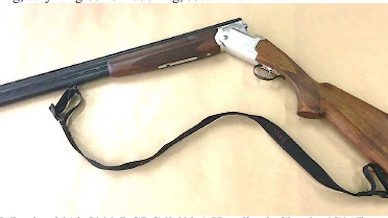 bild av ett hagelgevär