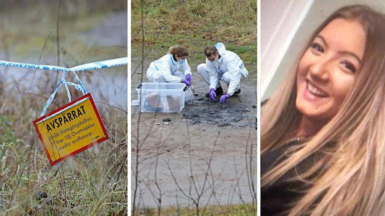 Wilma försvunnen i Uddevalla, ett bildmontage
