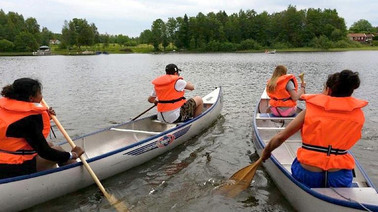 Fyra ungdomar paddlar två kanoter.