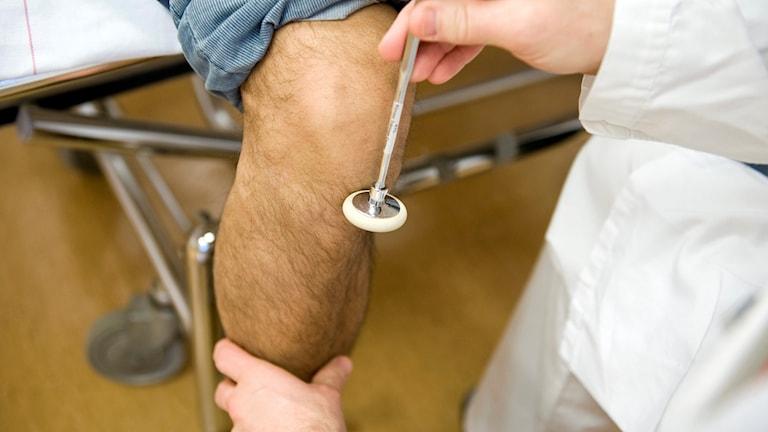 En läkare kontrollerar reflexen på ett knä.