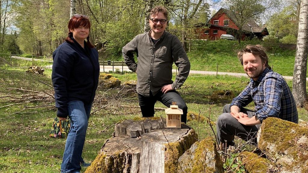 Tre personer i en fårhage