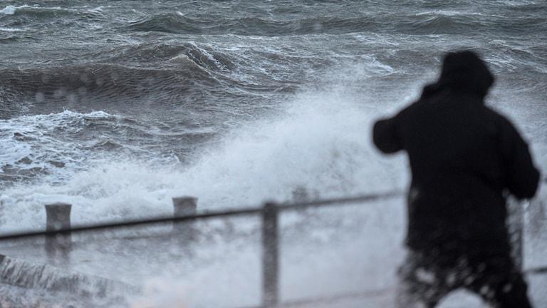 En silhuett av en man som tittar på ett stormigt hav. Foto: Johan Nilsson/TT