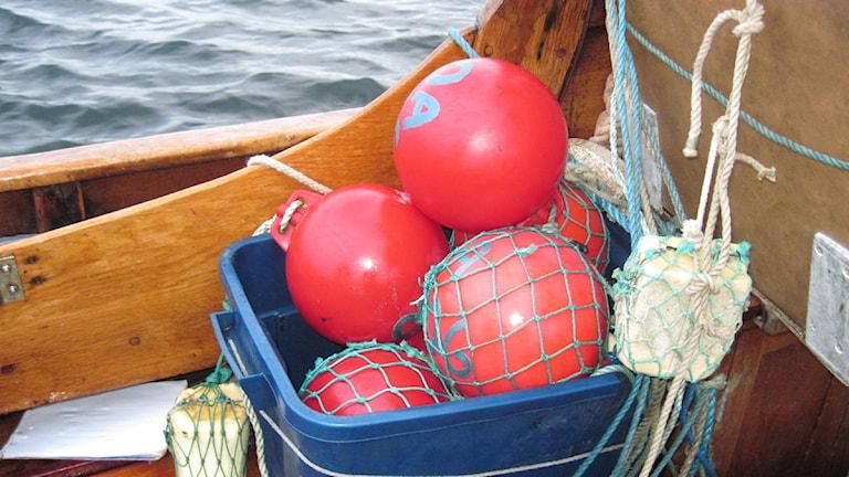 Bojar i fiskebåt. Foto: Skoob Salihi/SR Väst