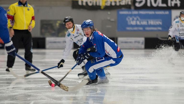 Bandy IFK Vänersborg Felix Phersson