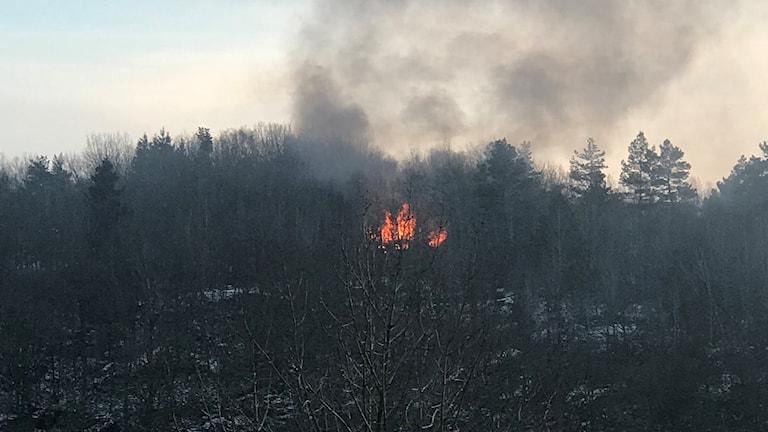 Branden på Österberget.