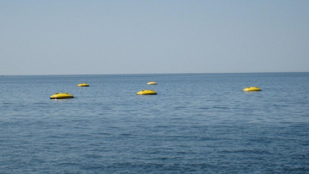 Så här ser en vågkraftspark ut ovan ytan. Foto: Seabased.