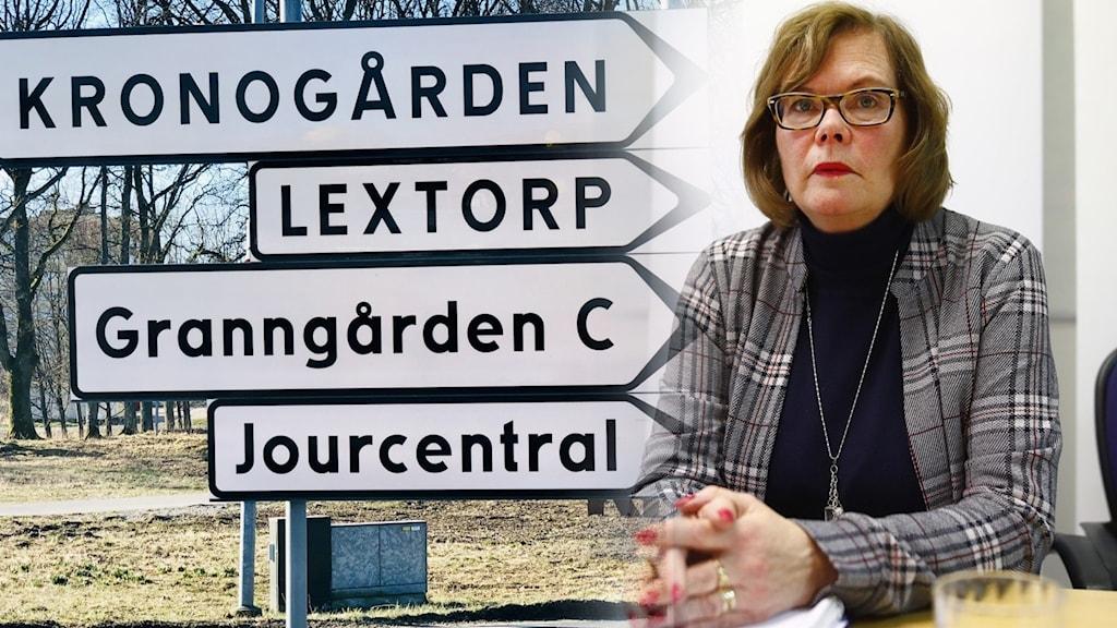Chefsåklagare Lena Medelius