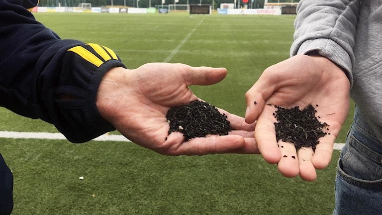 Två händer som håller fram vulkaniserat gummi, som är det som kan sprida sig i naturen från konstgräsplaner, framför en grön fotbollsplan.