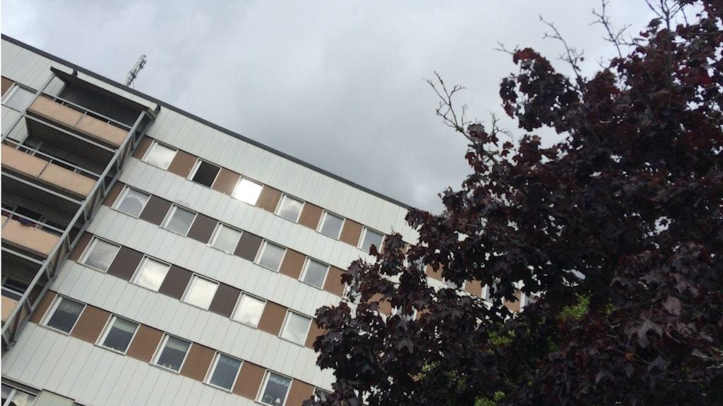 Bild på bostadsområdet Kronogården