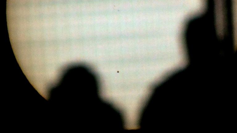 Silhuett av ett par. Foto: Johan Nilsson/TT