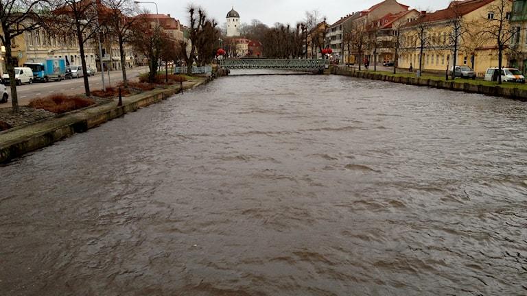 Höga vattenivåer i Bäveån i Uddevalla. Foto: Robin Nilsson/P4 Väst.