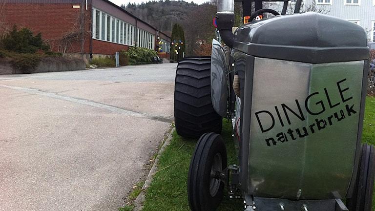 I dag tog studenterna vid Dingle Naturbruk studenten. Foto: Marie Mattsson/P4 Väst.