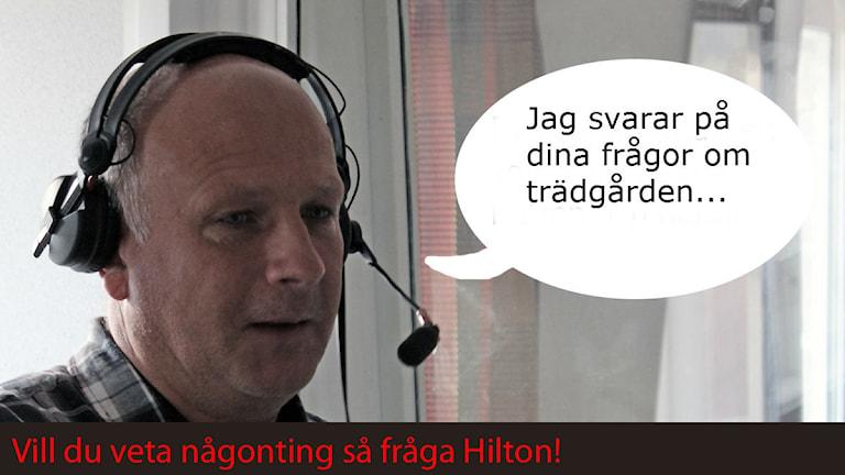 Peter Hilton kan allt om trädgård. Foto: Patrik Enlund/Sveriges Radio
