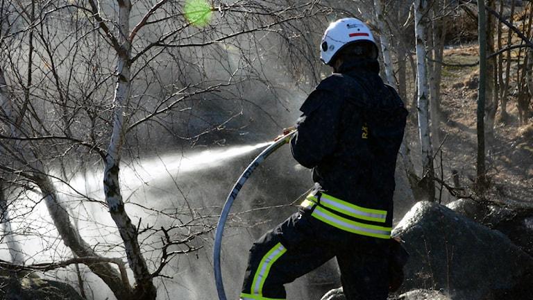 Brandman bekämpar en gräsbrand