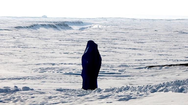En ensam kvinna i burka ute i snön Foto: Pontus Lundahl /TT