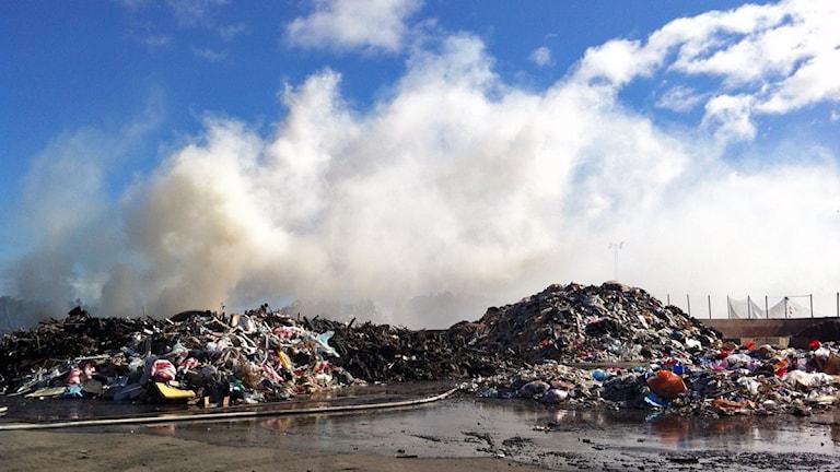 Rycker från sophögar på Heljestorps avfallsanläggning. Foto: Filippa Bohlin/P4 Väst.