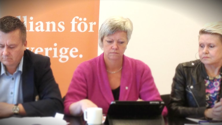 Annika Qarlsson (C) är kritisk till allianskollegornas förslag. Foto: Sveriges Radio