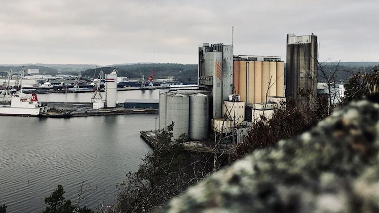 Hamnområdet i Uddevalla. Det som en gård var natur är numera industrier, och mycket annat. Det är en grå dag.