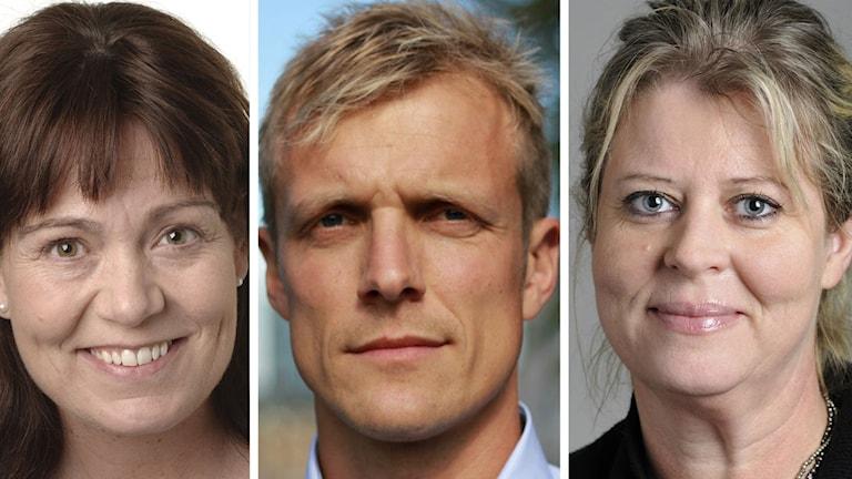 Lokala moderater: Ann-Sofie Alm, Martin Andreasson och Camilla Waltersson Grönvall.