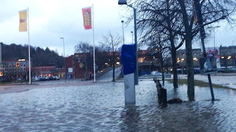 Översvämning vid Kampenhof i Uddevalla. Foto: Elisabeth Cederblad/Sveriges Radio.