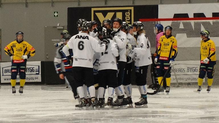Bandy Gripen. Arkivbild. Foto: Bengt Israelsson/Sveriges Radio
