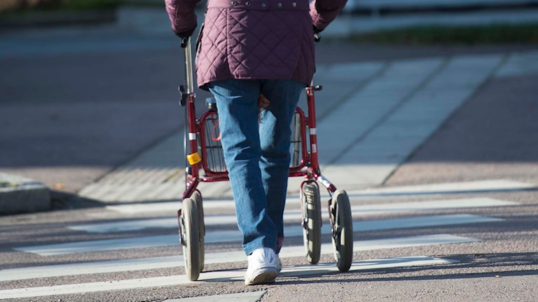 En äldre kvinna med rollator passerar ett övergångsställe. Foto: Fredrik Sandberg/TT.