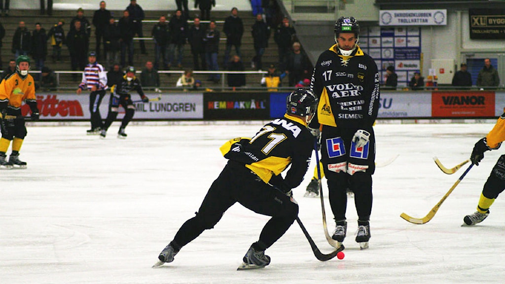 Bandymatch med Gripen Trollhättan. Foto: Victor Jensen/Sveriges Radio.