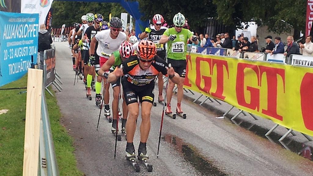 Åkare i Alliansloppet i Trollhättan 2014. Foto: Bengt Israelsson/Sveriges Radio.