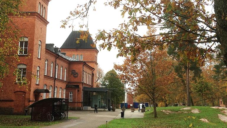 Restad gård i Vänersborg. Foto: Elisabeth Cederblad/Sveriges Radio.