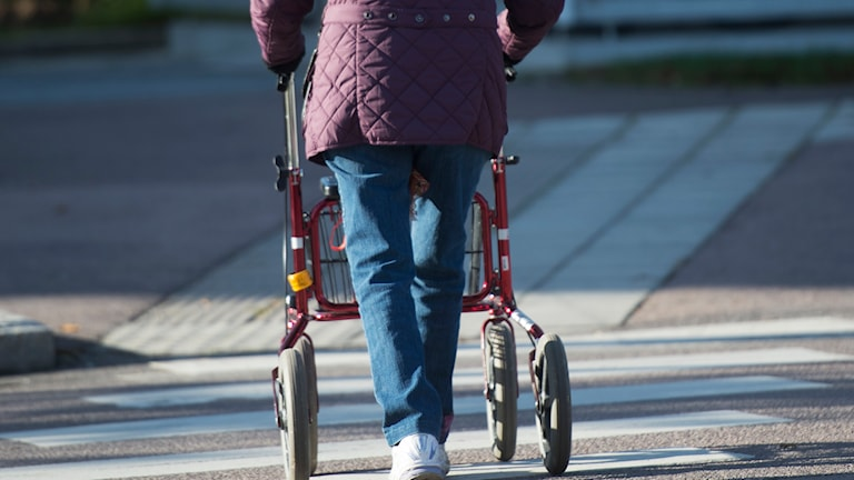 Kvinna med rullator. Foto: Fredrik Sandberg/TT