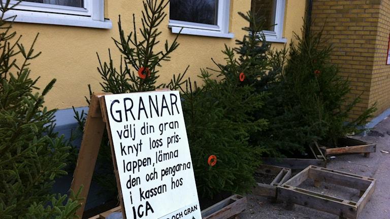 Vargön är en plats där man har förtroende för varandra. Foto: Jörgen Winkler/Sveriges Radio.