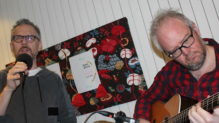 Ulf Michal och Magnus Sjöqvist, svenska lusorkestern
