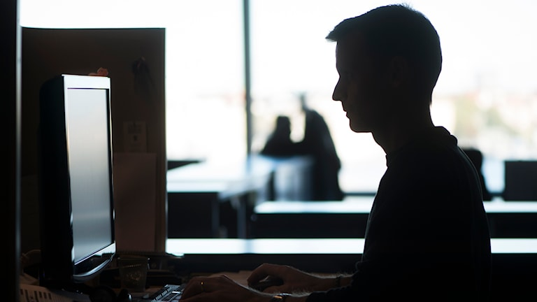 En man jobbar vid sin dator på sin arbetsplats. Foto: Fredrik Sandberg/TT.