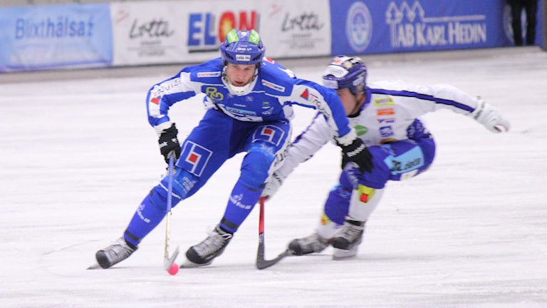 Bandy IFK Vänersborg  Foto: Elliot Ohlén/Sveriges Radio
