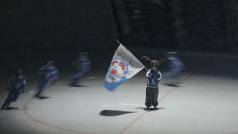 Bandy IFK Vänersborg entré Älgarnas flagga  Foto: Bengt Israelsson/Sveriges Radio