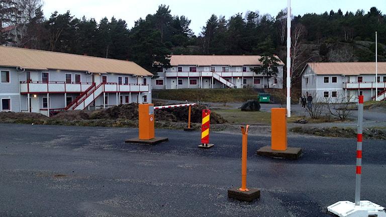 Tjörnbro park. Foto: Angelique Hvalgren Johansson/Sveriges Radio.
