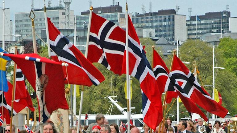 Bild på norska flaggor.