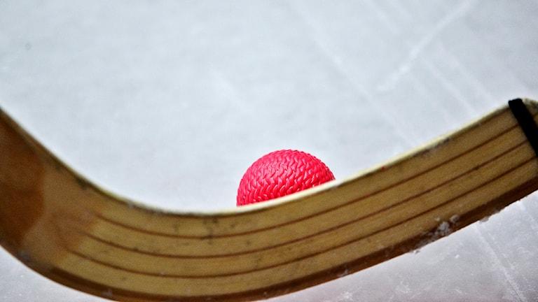 Bandyklubba och bandyboll. Foto: Anders Wiklund/Scanpix