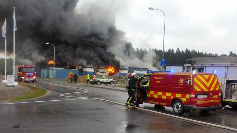 Foto: Tommy Öster/Sveriges Radio