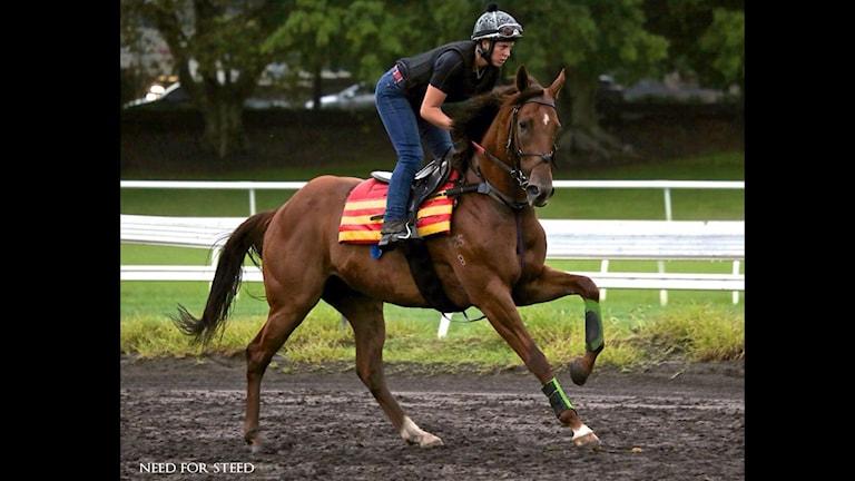 Gina Johansen rider på en häst.
