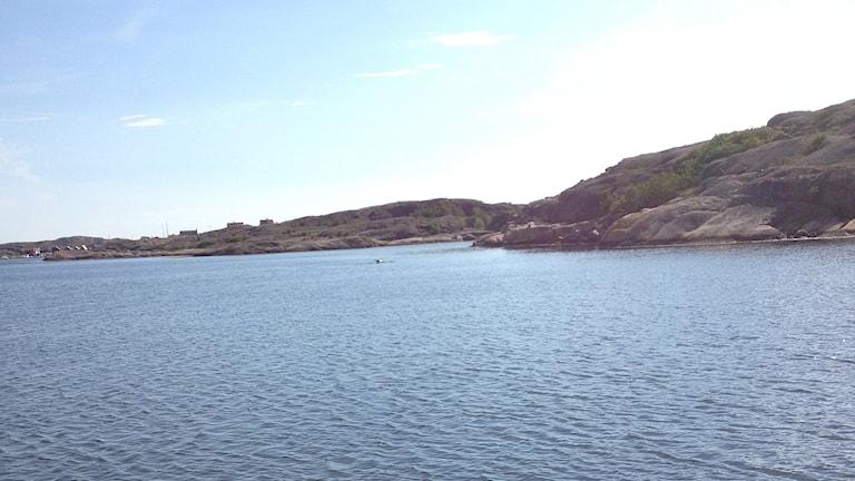 Havet vid Kungshamn. Foto: André Stärnman/Sveriges Radio.