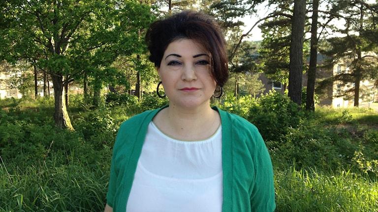 Sozan Namo, artist och kristdemokrat