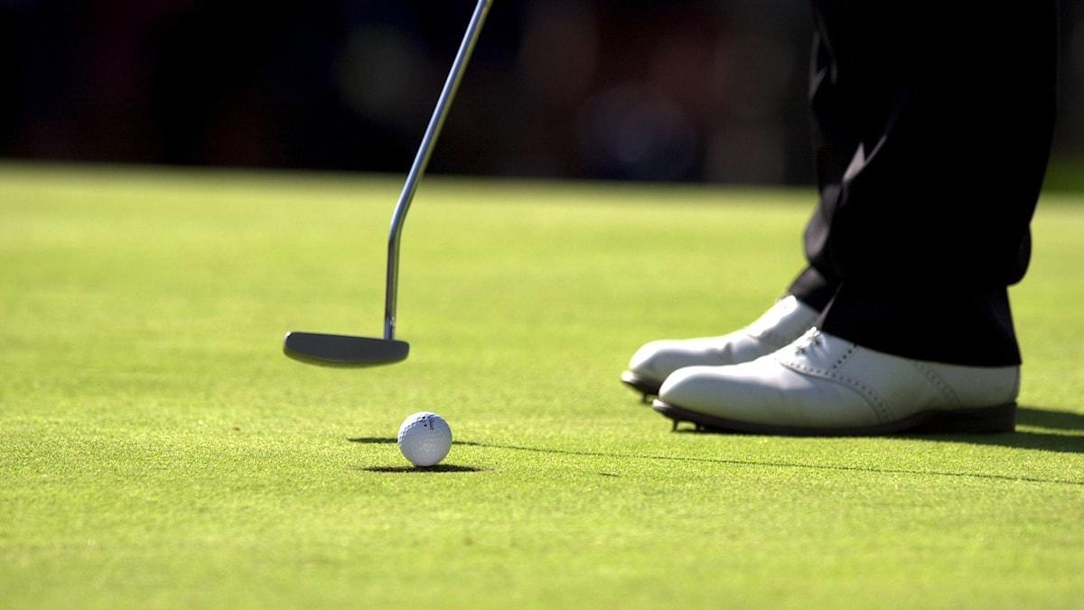 En golfare puttar på greenen. Foto: Mark Earthy/TT