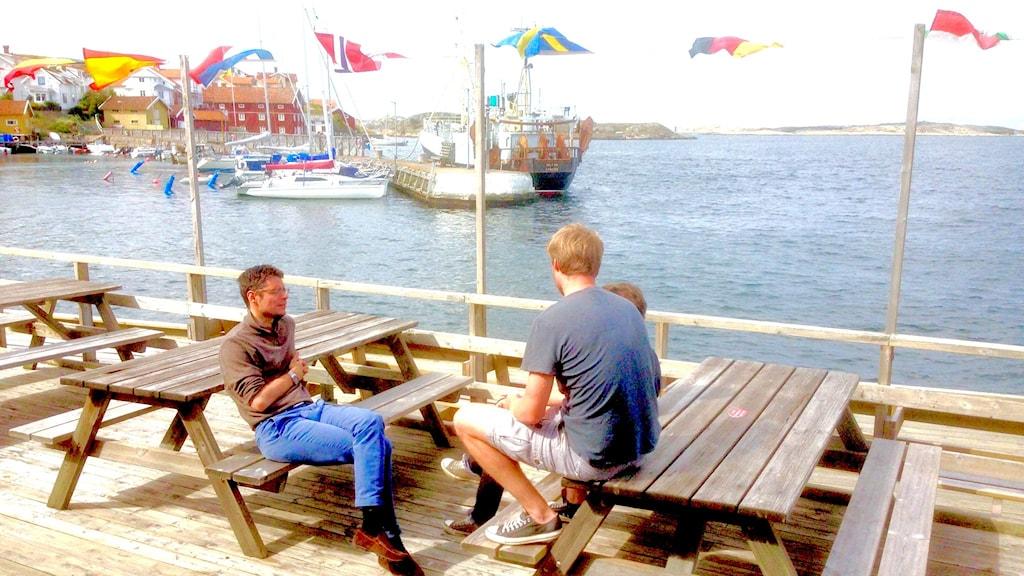Mattesnillen spekulerar på Grundsunds brygga. Foto Jörgen Winkler