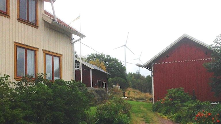 Vindkraftverk hos Lennart Eneling. Foto: Elisabeth Cederblad/Sveriges Radio.