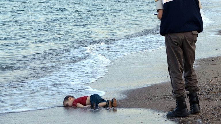 En död pojke ligger vid strandkanten i närheten av Bodrum. Foto: TT