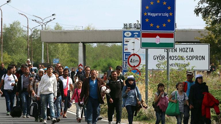 Flyktingar vid gränsen mellan Ungern och Österrike. Foto: Ronald Zak/TT.